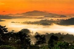 Danum Valley, Sabah, Borneo