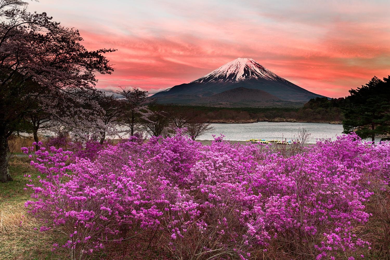 ake Shōji - Fuji Five Lakes, Japan