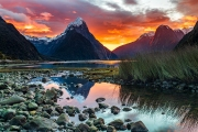 Milford Sound - Fiordland National Park, New Zealand