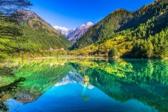 Mirror Lake - Jiuzhaigou National Park, Sichuan, China