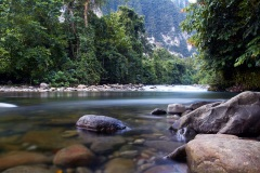 Gunung Mulu National Park - Sarawak, Borneo