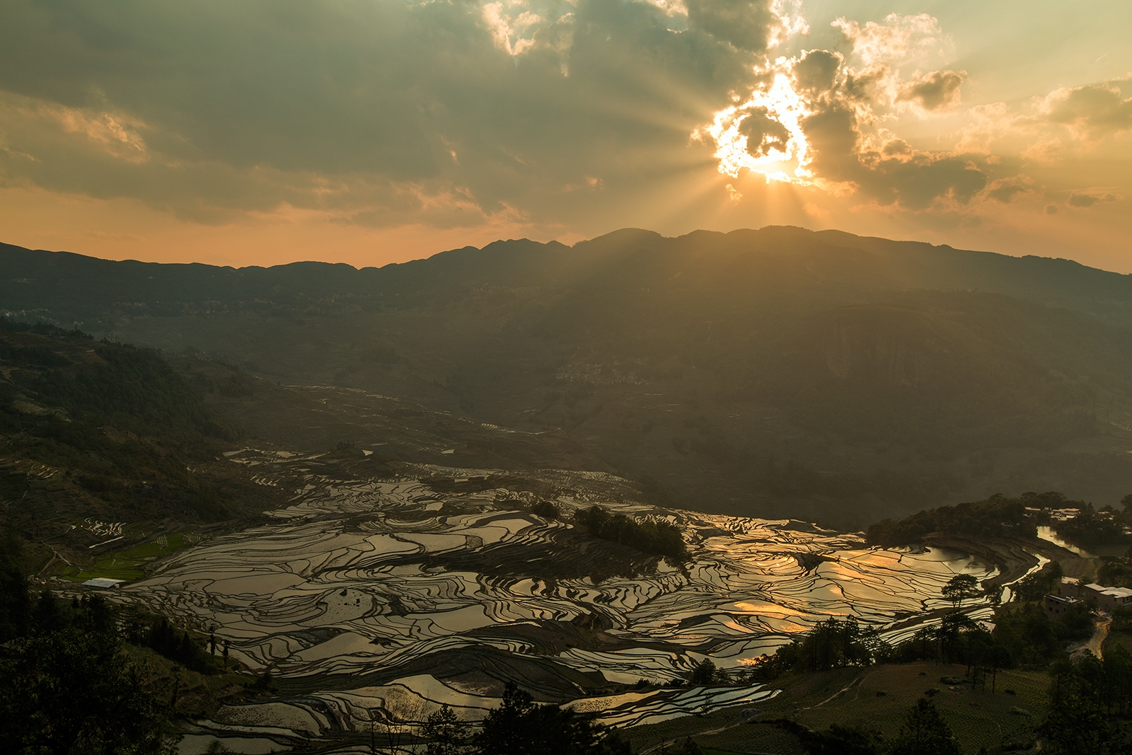 Yuanyang rice terraces - Yunnan, China
