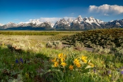 Grand Teton National Park - Wyoming, USA
