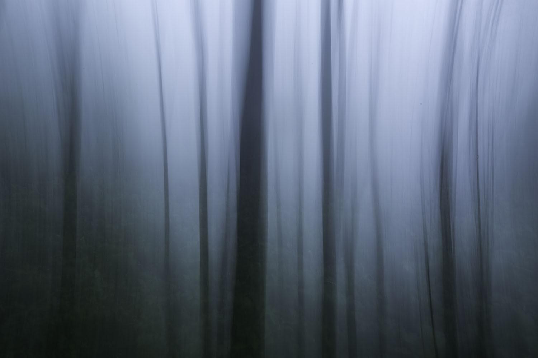 Zhangjiajie National Forest Park - Hunan, China