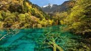 Five Flower Lake - Jiuzhaigou National Park, China