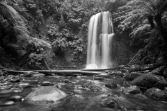 Hopetoun Falls - Beech Forest, Otway Ranges - Victoria, Australia